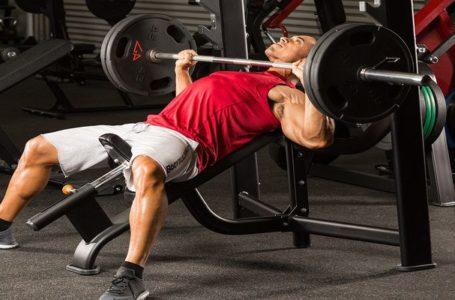 تعرف على التمارين الرياضية لتقوية عضلة الصدر